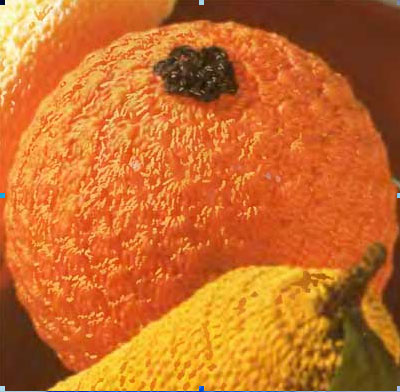 Как украсить стол к празднику. Вязаные фрукты. Апельсин.