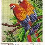 Схемы для вышивания экзотических животных и птиц.