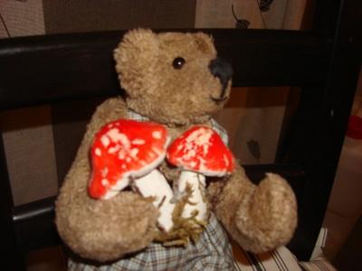 Маленькие мишки Елены Фоминой.