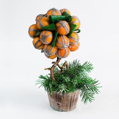 Мандариновое дерево своими руками.