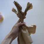 Помпон и бумага равно японское дерево счастья.
