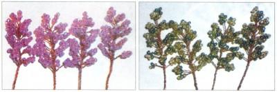 бисерная флористика